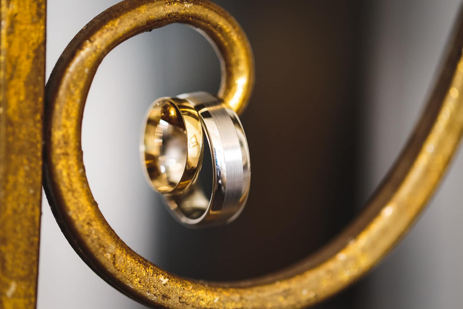 wedding rings elegantly photographed by chapter one photography at warwick house wedding venue